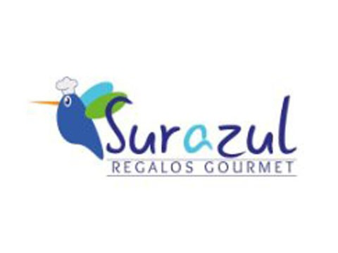 Regalo Sur Azul - WDesign - Diseño Web Profesional